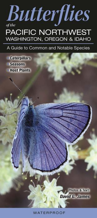 Quick Reference Publishing Butterflies of the Pacific Northwest