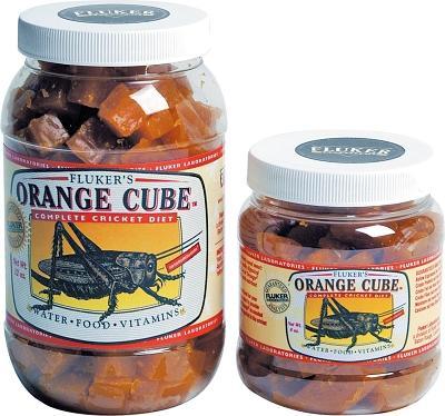 Orange Cube Cricket Diet 6 Oz