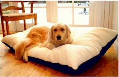 Majestic Pet Rectangle Pet Bed - Large/Blue