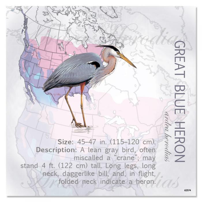 Tree Free Greetings Great Blue Heron Magnet