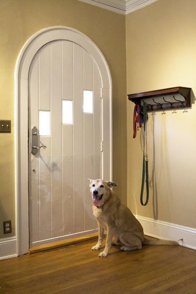 Cardinal Gates Clear Pet Door Shield