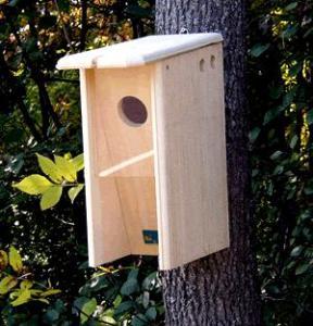 Starling Resistant Flicker House