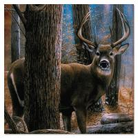 Tree Free Greetings Woodland Sentry Buck Magnet