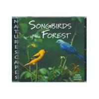 Naturescapes Music Songbirds of the Forest