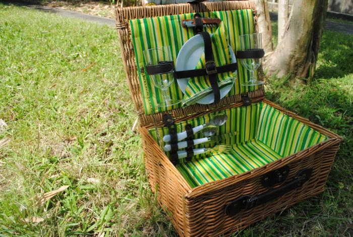 Picnic and Beyond Veranda Collection Willow Picnic Basket for 2 (Green)