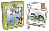 Outset Media Games Professor Noggin's Reptiles & Amphibians Card Game