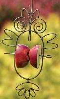 Ancient Graffiti Fruit Spear Owl Bird Feeder