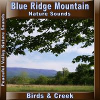 Peaceful Valley Productions Blue Ridge Mountain Birds & Creek CD