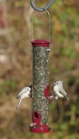 Aspects Medium Seed Tube Bird Feeder, Berry