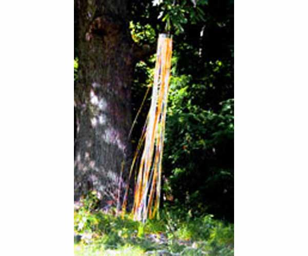 West Coast Design Rainbow Windsock Gold Silver