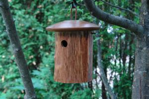 Wren / Chickadee Bird Houses by Byer of Maine