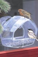 Perky Pet Clear Wild Bird Window Bird Feeder with Suction Cups