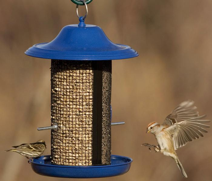 Hiatt Manufacturing Cobalt Twin Bird Feeder