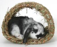 Peters Grass Hide-a-way Hut