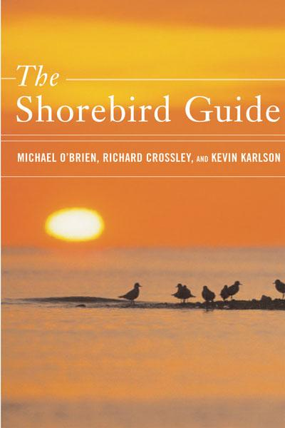 Peterson Books The Shorebird Guide
