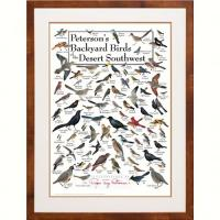 Steven M. Lewers & Associates Peterson's Backyard Birds of the Desert SW Poster
