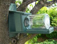 Songbird Essentials Recycled Plastic Squirrels in Jar Feeder