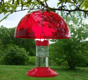 Hummingbird Feeders by Songbird Essentials