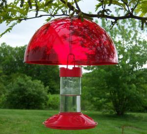 Hummingbird Feeders by Songbird Essentials