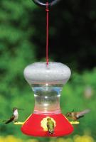 Songbird Essentials Fliteline 30 Ounce Hummingbird Bird Feeder