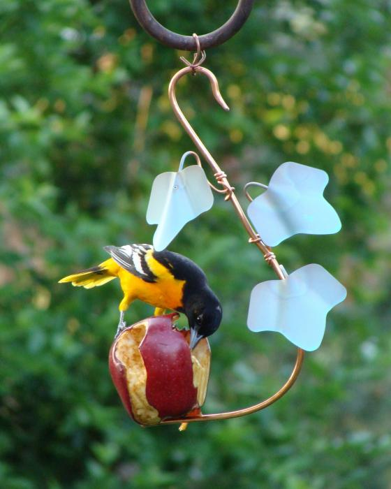 Songbird Essentials Copper Ivy Fruit Cafi Oriole Bird Feeder