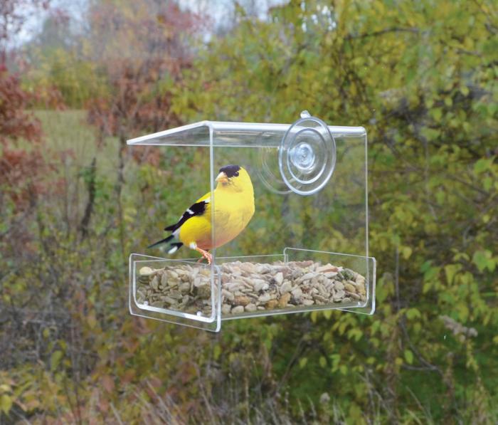Songbird Essentials Clear View Mini Window Bird Feeder