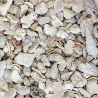 Florida Crushed Coral