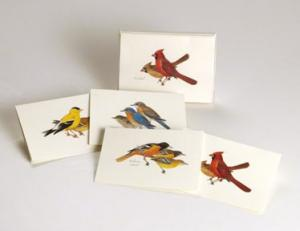 Steven M. Lewers & Associates Peterson Bird Notecard Assortment (2 each of 4 styles)