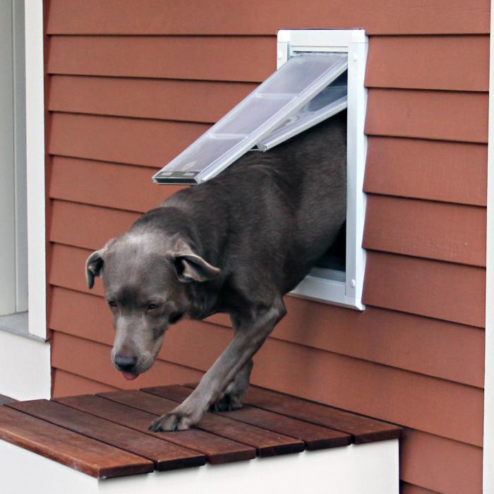 "Endura Flap Pet Door, Wall Mount, Extra Large Double flap - 12""w x 22""h, White Frame"