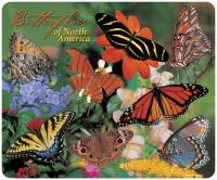 Impact Photographics Mouse Pad Butterflies