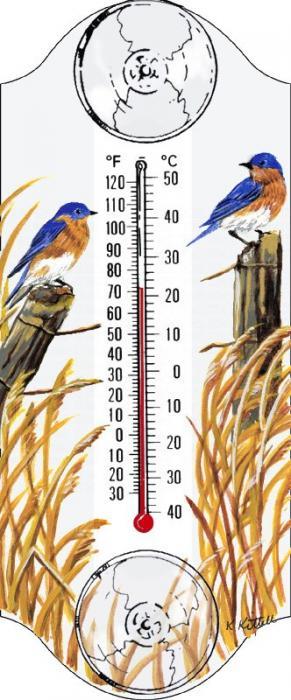 Aspects Bluebird Window Thermometer