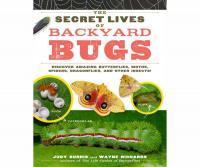 Workman Publishing The Secret Lives of Backyard Bugs