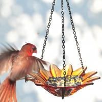 Couronne Company 8 inch Daisy Birdfeeder, Orange