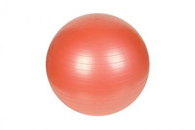 Sunny Health and Fitness Anti-Burst Gym Ball, 55CM