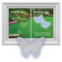 Window Alert Butterfly Decal