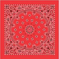 Liberty Mountain Bandana Paisley Blue/red