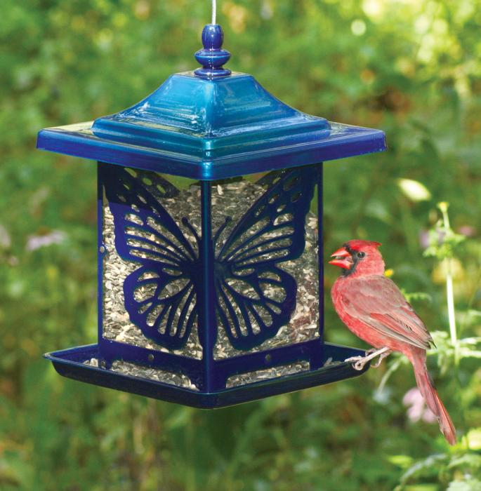 Homestead The Monarch Electric Blue Bird Feeder