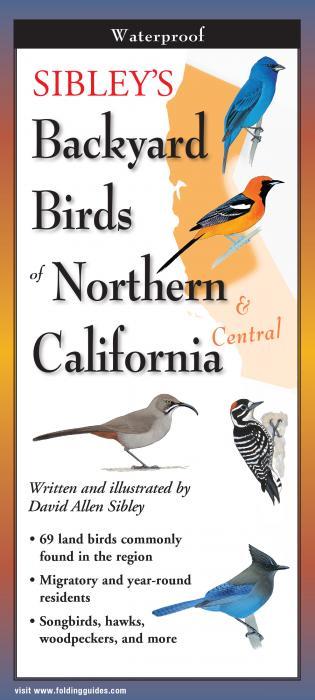 Steven M. Lewers & Associates Sibley's Backyard Birds of Northern California