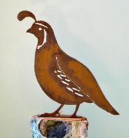 Elegant Garden Design CA Quail Male Bird Silhouette