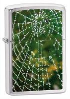 Zippo SPIDER WEB RAIN DROPS BrushedChrome