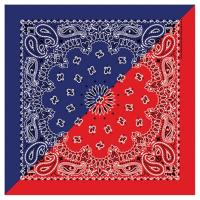 Liberty Mountain Split Paisley Bandana, Navy/Red