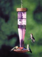 Schrodt Paradise Amethyst Lantern Hummingbird Bird Feeder