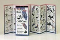 Steven M. Lewers & Associates Birds of Florida's Gulf Coast