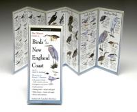 Steven M. Lewers & Associates Birds New England Coast Guide
