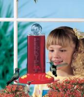 Perky Pet Window Mount Hummingbird Window Bird Feeder