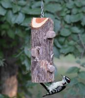 Songbird Essentials 3 Plug Log Suet Feeder without Perches