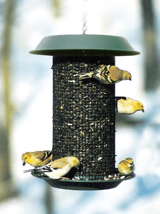 Woodlink Magnum Sunflower Bird Feeder 4 Quart