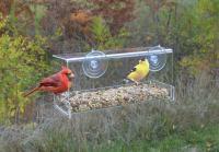 Songbird Essentials Clear View Deluxe Open Diner Window Bird Feeder