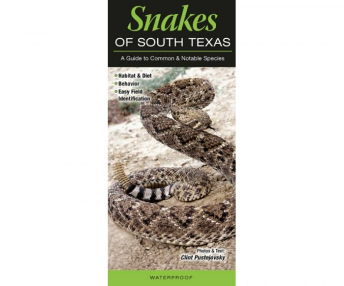 Quick Reference Publishing Snakes of South Texas