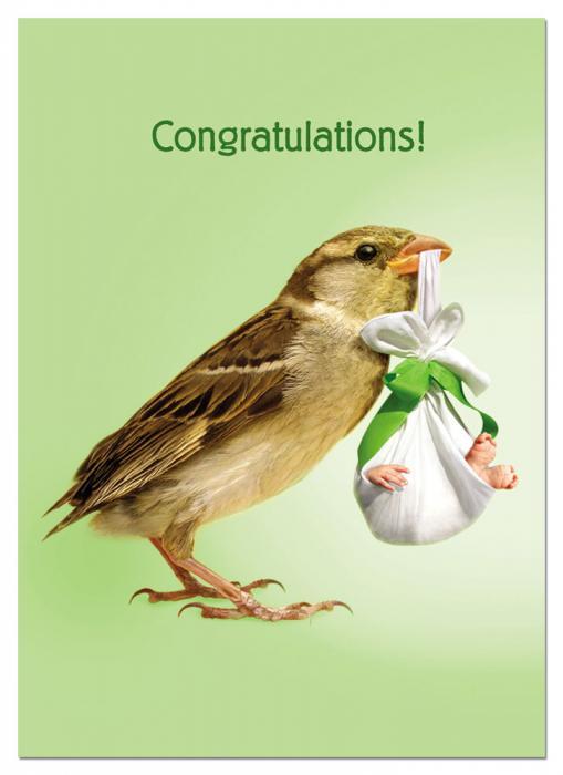 Tree Free Greetings How Tweet New Baby
